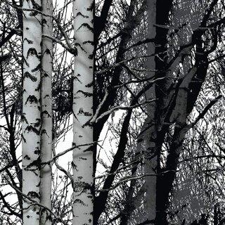 d-c-fix Wood 2m x 67,5cm